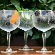 An Evening for Gin Lovers